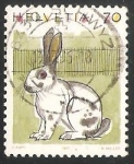 Stamps Switzerland -  Domestic Rabbit