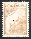 Sellos del Mundo : Asia : Vietnam : Sunda Slow Loris (Nycticebus coucang)