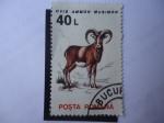 Stamps Hungary -  S/hungría:4995