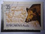 Stamps Romania -  Jabalí.