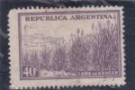 Sellos de America - Argentina -  CAÑA DE AZUCAR