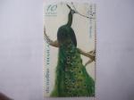 Stamps Thailand -  Pavo Real - Pavo Muticus.