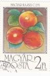 Stamps Hungary -  F R U T A-