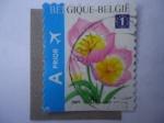 Stamps Belgium -  Tulipán.