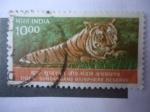 Sellos de Asia - India -  Scott/India:1826 -Tigre