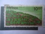 Sellos de Asia - India -  Scott/India:900 - Cultivo.