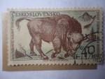 Sellos de Europa - Checoslovaquia -  Bisonte - Zubor Europsky- (Tanap)