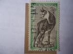 Sellos de Europa - Checoslovaquia -  Ciervo - Chamoix - Kamzik-Rupicapra Rupicapra (Tanap)