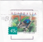 Stamps Australia -  AVE- VARIEGATED -FAIRY-WREN