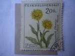 Stamps Czechoslovakia -  Flora - Michel N°1234 - Yvert N°1115.