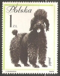 Stamps : Europe : Poland :  Puddle Frances