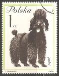 Sellos de Europa - Polonia -  Puddle Frances