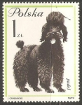 Stamps Poland -  Puddle Frances