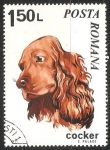 Sellos de Europa - Rumania -  Cocker-Spaniel