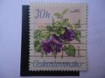 Sellos de Europa - Checoslovaquia -  Cobaea Scandens Cav. - Jirincova 967.