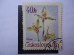 Stamps Czechoslovakia -  Lycaste.