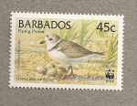 Stamps America - Barbados -  Aves