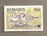 Sellos del Mundo : America : Barbados : Aves