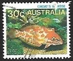Sellos de Oceania - Australia -  Choat's Red Leopard Wrasse