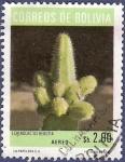 Sellos de America - Bolivia -  BOLIVIA Echinocactus rebutia 2 aéreo (1)