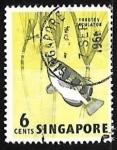 Sellos de Asia - Singapur -  Toxotes jaculatrix