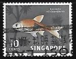 Sellos de Asia - Singapur -  Rasbora heteromorpha