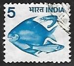 Sellos de Asia - India -  Pescado azul