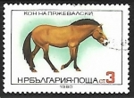 Stamps Bulgaria -  Equus ferus przewalskii