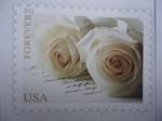 Sellos del Mundo : America : Estados_Unidos : Las Rosas de la Boda. The Wedding Roses.