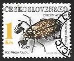 Sellos de Europa - Checoslovaquia -  Polyphylla fullo