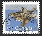 Sellos de America - Canadá -  Flying Squirrel