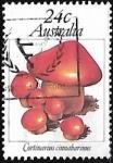 Sellos de Oceania - Australia -  Setas