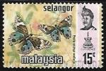 Sellos de Asia - Malasia -  Mariposa