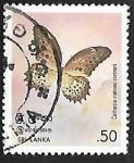 Sellos de Asia - Sri Lanka -  Mariposa