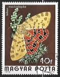 Stamps Hungary -  Mariposa