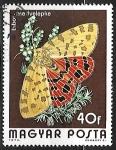 Sellos de Europa - Hungría -  Mariposa