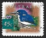 Sellos de Oceania - Australia -  Little Kingfisher