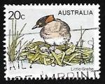 Sellos de Oceania - Australia -  Little Grebe