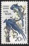 Stamps United States -  Calocitta colliei