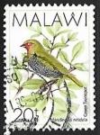 Sellos de Africa - Malawi -  Mandingoa nitidula