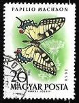 Sellos del Mundo : Europa : Hungría : mariposa