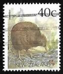 de Oceania - Nueva Zelanda -  Brown Kiwi