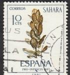 Stamps Morocco -  Sahara - 256 - Ficus