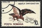 Sellos de Europa - Rumania -  Aguila chrysaetos