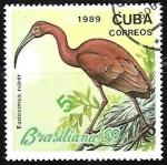 sello : America : Cuba : Brasiliana 89