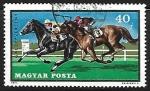 Stamps Hungary -  Equitación