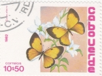 Stamps Cape Verde -  Mariposas