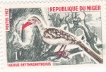 Stamps : Africa : Niger :  ave-Tockus Erythrorhynchus