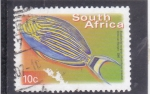 Stamps South Africa -  pez tropical