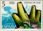 sellos de Europa - España -  FAUNA INVERTEBRADOS ESPONJA DE MAR